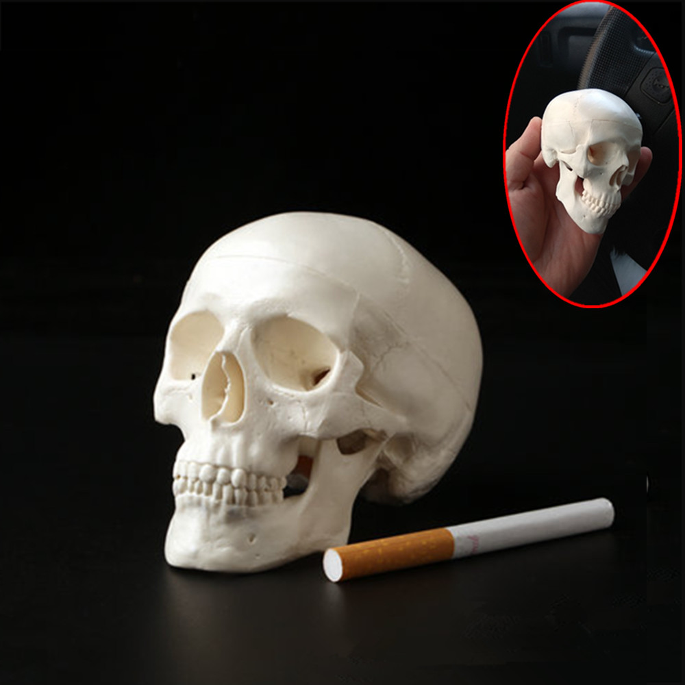 1pc Mini Skull Human Anatomical Anatomy Head Medical Model Convenient 92*99*71mm