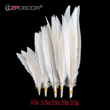 20Pcs/Lot 10-35CM 4-14 Inch Natural Silver Pheasant Tail Feathers for Crafts Wedding Decorations Feather Plumes