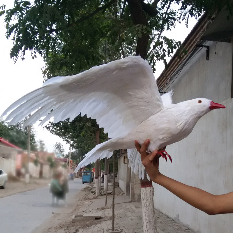 Fine Online Get Cheap White Dove Plush Aliexpress Com Alibaba Group