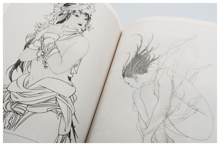 Famous historical figures drawing copy book Traditional