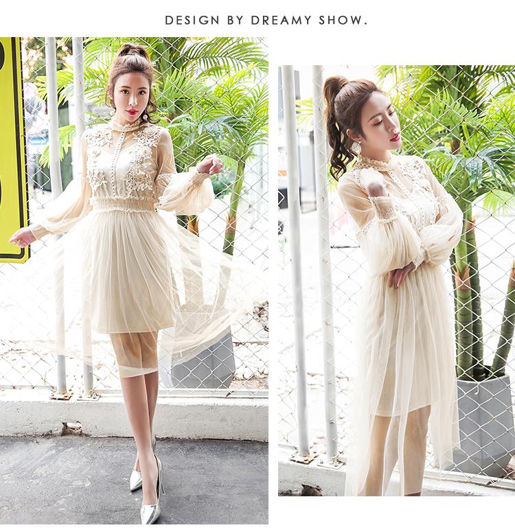 19 New Women Fashion Dress Stand Collar Lantern Sleeve Mesh Dress See-through Lace Embroidery Fairy Dress Femme Vestidos Robe 3