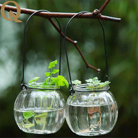 2017 High Quality Hot Sale 1PCS Glass Shape Flower Water Plant Hanging Vase Hydroponic Container Pot