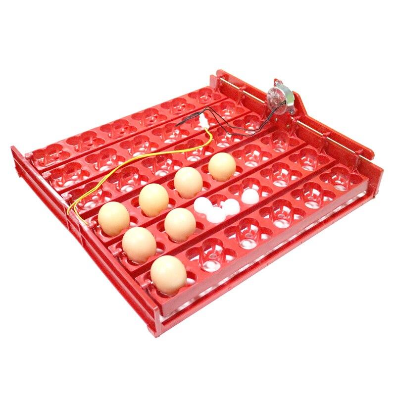 36 huevos/144 huevos de aves paloma pato ganso codorniz incubadora automática equipos de incubación La Aves aves incubadora equipo