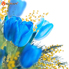 Rare Blue Tulips Flowers Seeds Bonsai Tulip Seeds Flower Plants 100 Particles / lot