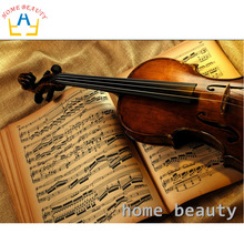HOME BEAUTY 5d diy diamond paint kit picture of rhinestones diamond pattern embroidery mosaic painting music violin AA928