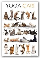 Yoga Cat Art Poster Print 20X30 Canvas Print Free Shipping