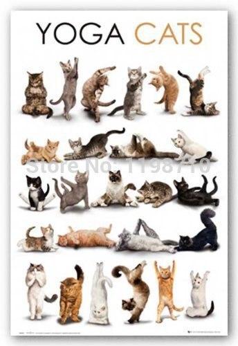 Yoga Katze Kunst Poster Drucken 20X30