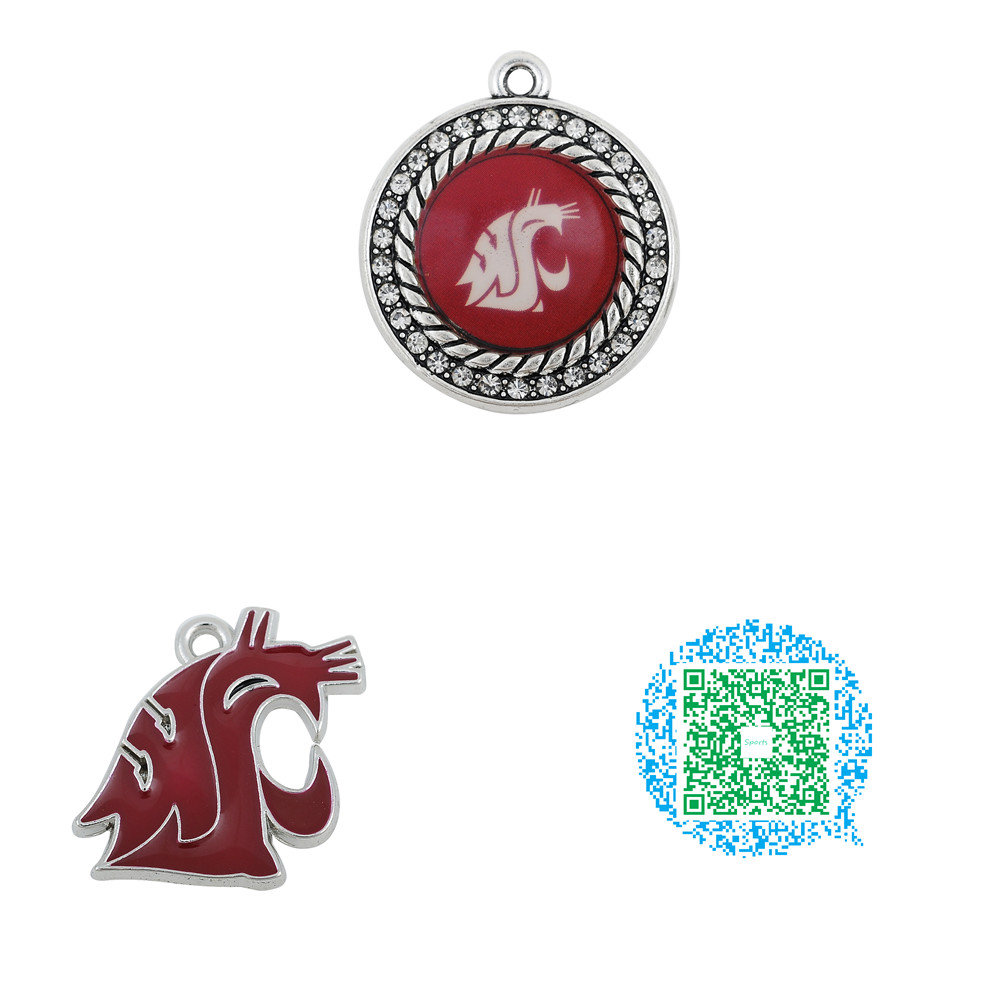 Skyrim 20pcs Washington State Cougars College Team Enamel Jewelry Charms  For Necklace Bracelet(china (