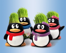 4Pcs Hot selling penguin cute Hair man Plant Bonsai Grass Doll Mini Plant Fantastic Home Decor pot+seeds 4 Design Free Shipping hot sell free shipping very beautiful doll long wig hair doll hot selling present for children