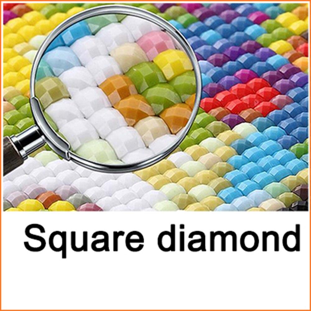 Diamond embroidery diamond painting in Diamond Painting Cross Stitch from Home Garden