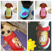 Popular Cute Small Dogs For Sale Buy Cheap Cute Small Dogs