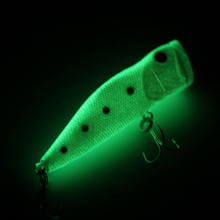 Floating Luminous Fishing Lure