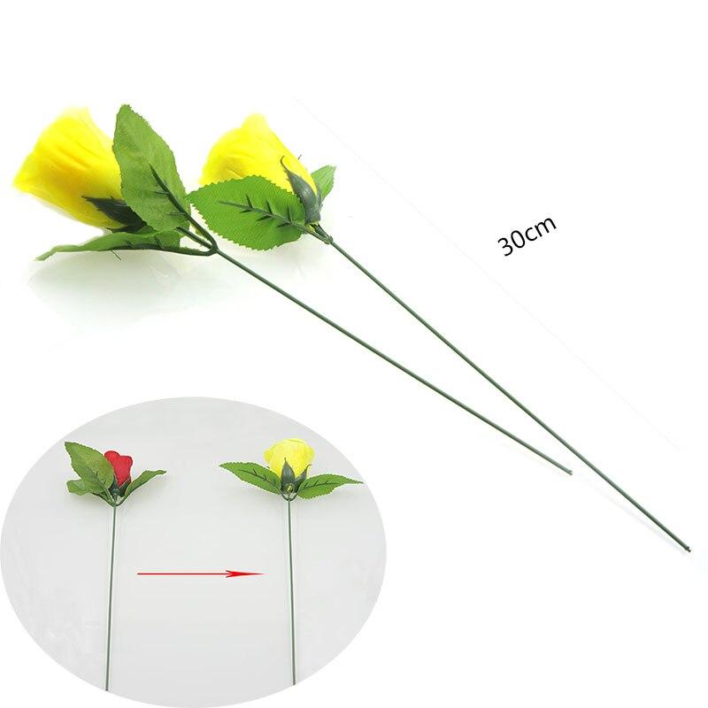 Verfärbung rosen (rot ändern gelb) rose zauber ändern Valentinstag ...