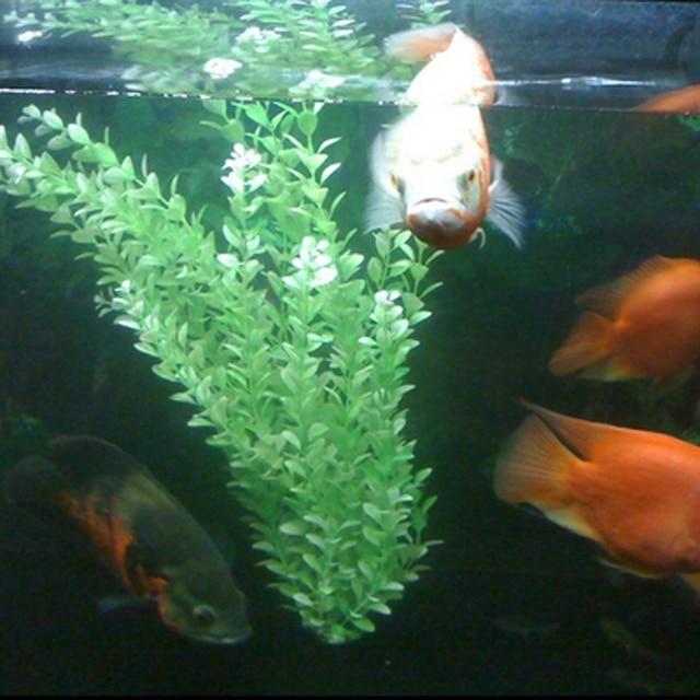 3 teile los submarine ornament k nstliche gr n unterwasser pflanze aquarium aquarium dekoration. Black Bedroom Furniture Sets. Home Design Ideas