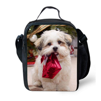 Merry Christmas gift insulated lunch bags for children school,lunch container for adult work office,lunch box bag with straps