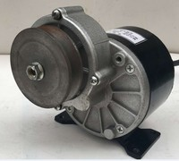 250w 12 v DC gear brushed motor with belt pulley, MY1016Z2