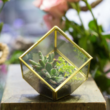 3.9inches Copper Brass Squares Inclined Cube Clear Glass Geometric Terrarium Box for Succulent Plant Moss Planter with Swing Lid