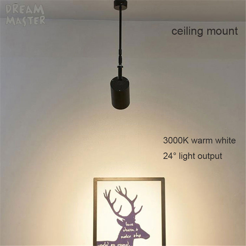 Image 2 - Industrial art Wall spotlights long pole led wall lights for gallery museum picture lighting flexible arm exhibition photo lamp-in LED Indoor Wall Lamps from Lights & Lighting