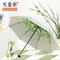 Black glue, sunscreen, anti ultraviolet, double deck sun umbrella