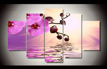 on Orchid Water