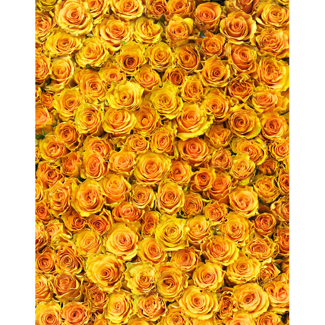 Newborn Floral Vinyl Cloth Yellow Rose Flower Photography Backdrops