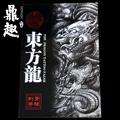 Oriental Dragon Tattoo Designs Chinese Traditional Animal Logo TB2201