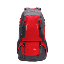 GZL 60L waterproof backpack trekking journey baggage girls males journey backpack multi-purpose huge capability massive lovers bag black8007
