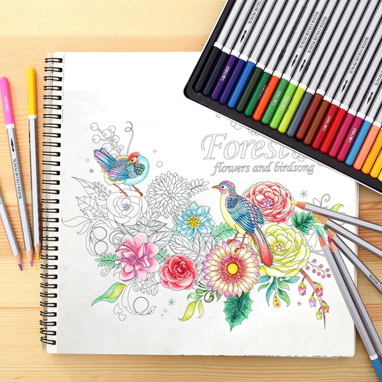 30 Pages Filmy Forest Colouring Book Rel