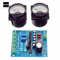 Panel 2pcs Plastic Metal VU Meter Warm Back Light Recording Audio Level Amp With Driver Integrated