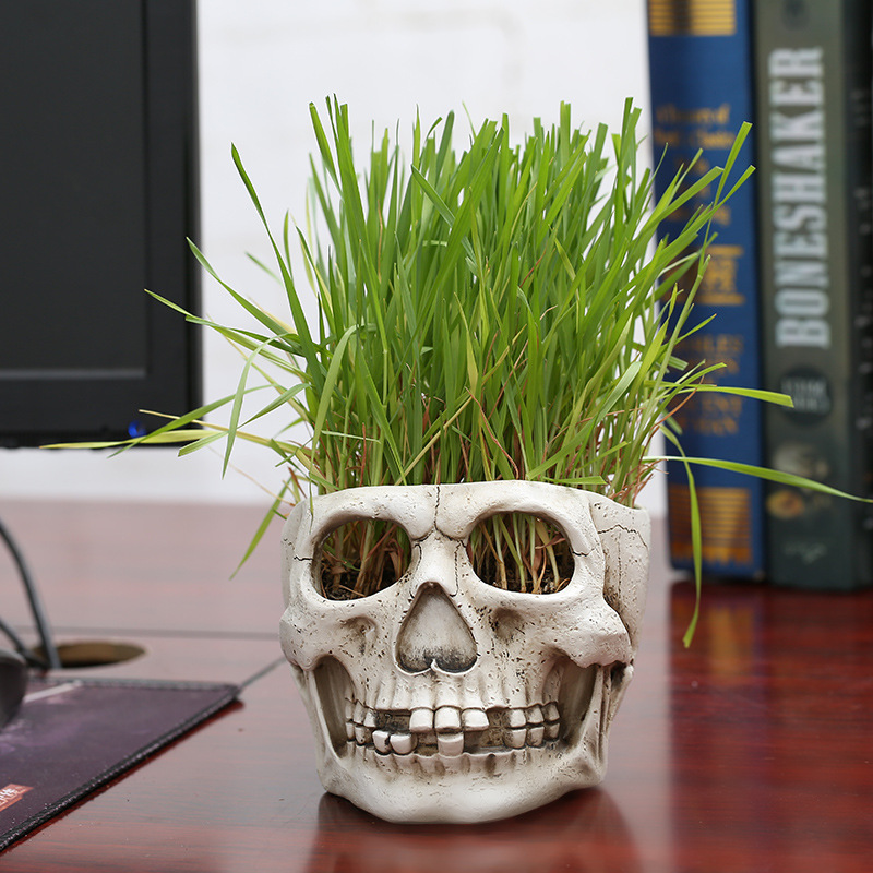 Carved Human Skull Flower Pot Vase Succulent Plant Container Halloween Decor NEW