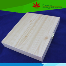 Fitted wooden box High Quality human tissue anatomy human histology slides