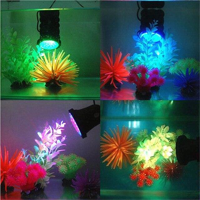 And Lights Pond Aquarium Flower Garden