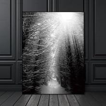 Картина скандинавский плакат Холст Живопись Домашний декор художественные принты высокие деревья лес природные настенные картины гостиная художественное украшение