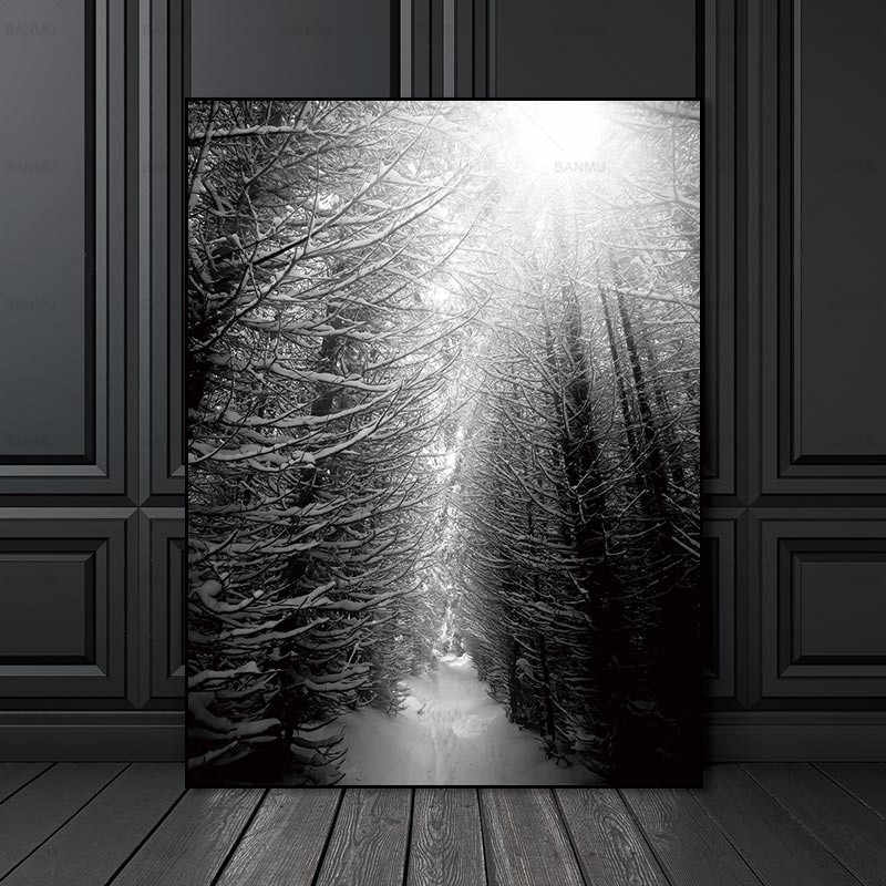 Picture nordic poster Canvas Painting home decor art  Prints Tall Trees Forest  Natural Wall Pictures Living Room Art Decoration