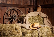 Laeacco Farm Wooden House Haystack Wheel Scene Celebration Party Photographic Backgrounds Photography Backdrops For Photo Studio