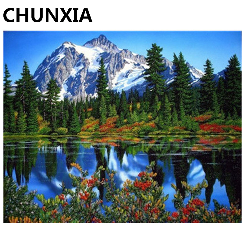 CHUNXIA Painting By Numbers DIY Framed Oil Paint Pictures Wall Art Home Decor Unique Gift Y5525