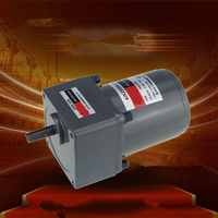 Single Phase 220V AC Vertical Micro Gear Motor 25W 4IK25GN Constant speed High Torque
