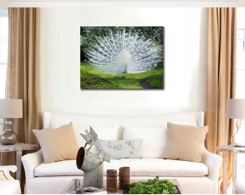 online get cheap white peacock decor -aliexpress | alibaba group