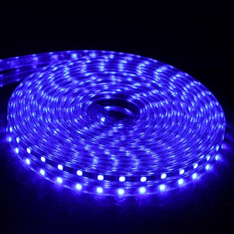 SMD 5050 AC 220 В Светодиодная лента для улицы Водонепроницаемая 220 В 5050 в 220 В Светодиодная лента 220 В SMD 5050 Светодиодная лента 1 м 2 м 5 м 10 м 20 м 25 м 220 В - Испускаемый цвет: Blue