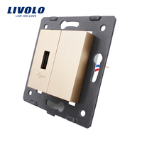 Free Shipping Livolo Golden Plastic Materials EU Standard DIY Parts Function Key For USB Socket VL