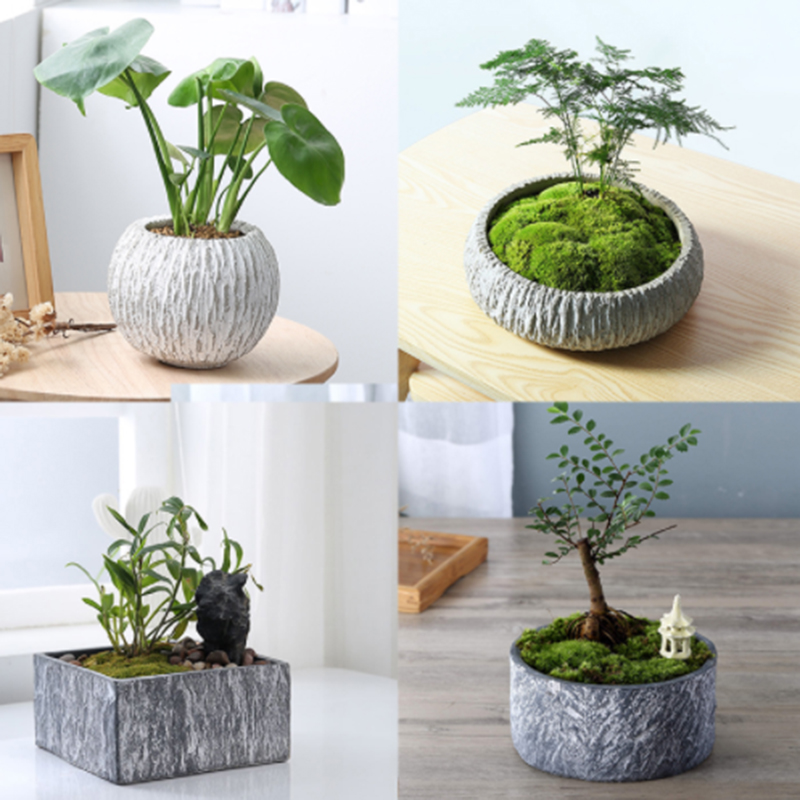Round And Square Cement Flower Pot Silicone Mold Home Decoration Crafts Succulent Plants Concrete Planter Vase Silicone Molds