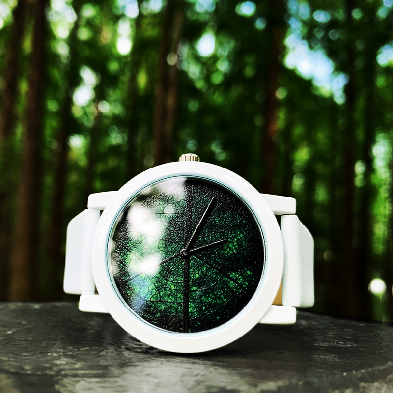 2019 Enmex creative design neutral wristwatch leaf vein concept brief hit color simple face nature fashion quartz lady watches(China)