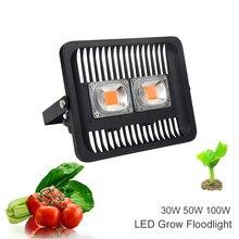 IP65 LED COB Flood Light 100W 50W 30W 220V Input Smart IC Driver Full Spectrum Fruit Flower Cultivate Plant Lamp DIY Grow Light