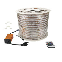 5050 60 LED / m LED Strip 100m / roll Flexible Rope Ribbon Tape 220 Volts RGB Magic Lighting Decor with 20 keys Remote Controler