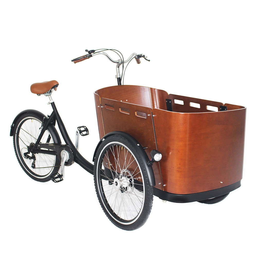 Heavy Duty Front Cabin Electric Cargo Tricycle Carry Kids Family Cargo Bike
