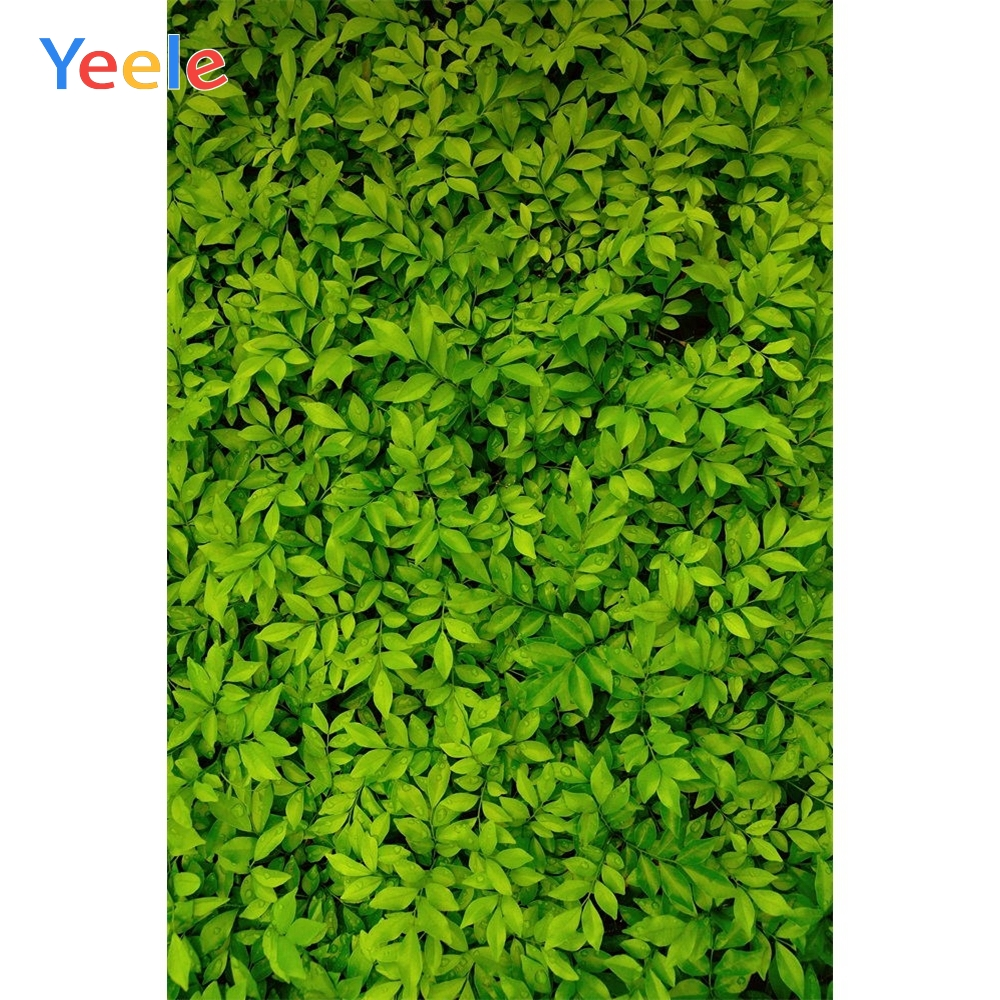 Yeele Green Leaves Scene Portrait Commodity Show Photography Backgrounds Personalized Photographic Backdrops For Photo Studio-in Background from Consumer Electronics