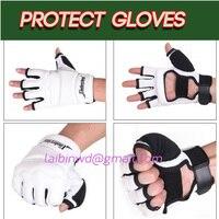 Taekwondo Karate Glove WTF Approved Plam Hand Protector Taekwondo Gloves Martial Arts Sports Hand Guard Boxing