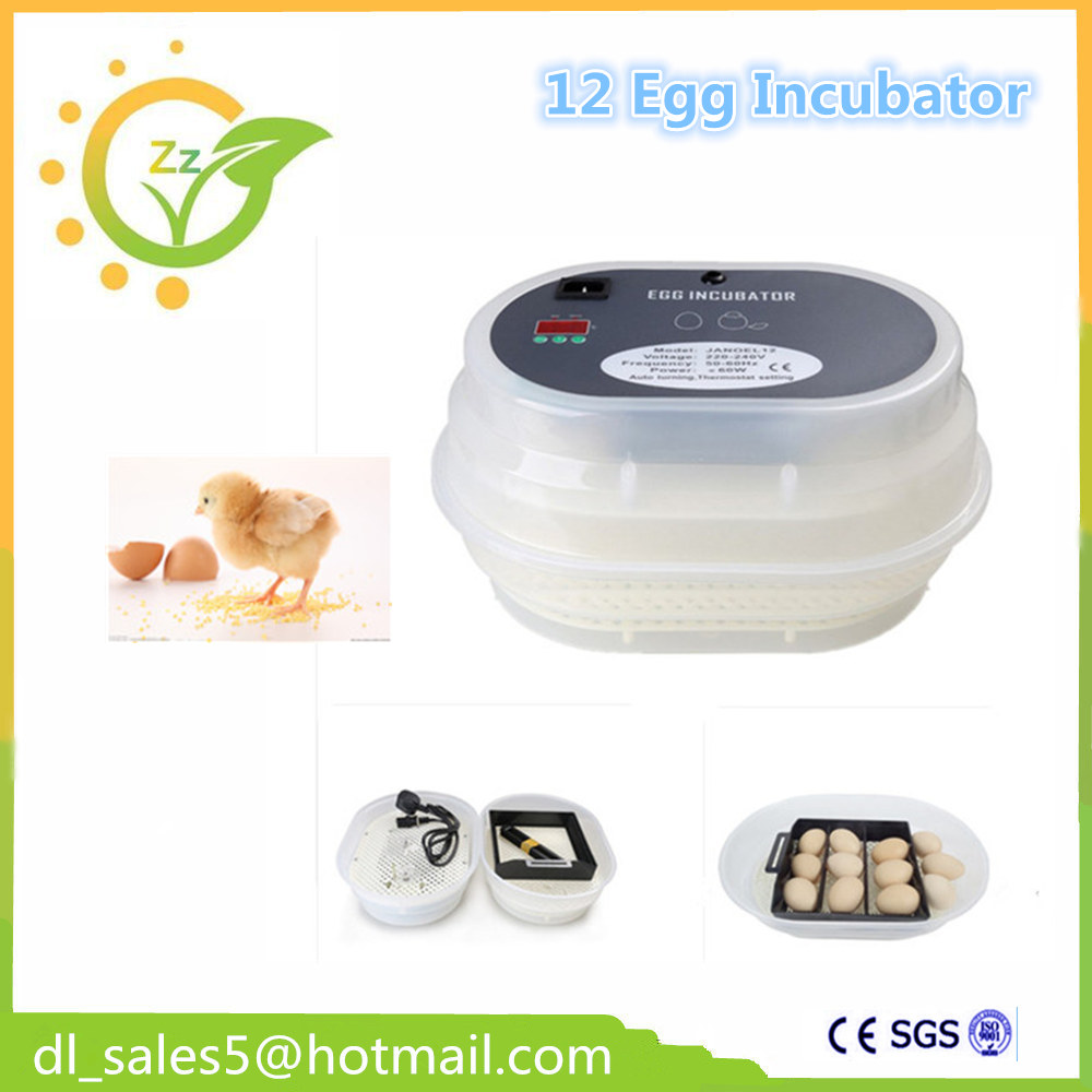 Home use China cheap 12 eggs Incubator automatic brooder hatcher machine china cheap hathery 12 egg incubator automatic brooder machines for hatching eggs