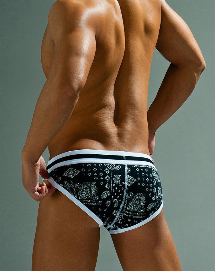 Topdudes.com - Men's High Quality Low Waist Sexy Comfortable Briefs Underwear