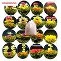 16 виды Ручной Цветущий Flower Чай Китайский Бал Blooming Flower Травяной чай Искусственный Flower Чай Продукты Здравоохранения 130 г